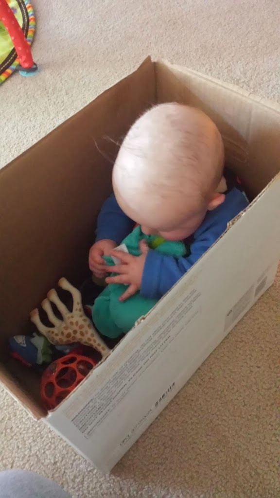 https://www.pinkoatmeal.com/diaper-box-play-alternative/