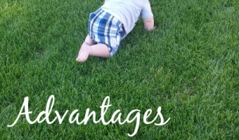 Exploring The Backyard – The Advantages Of Outdoor Play