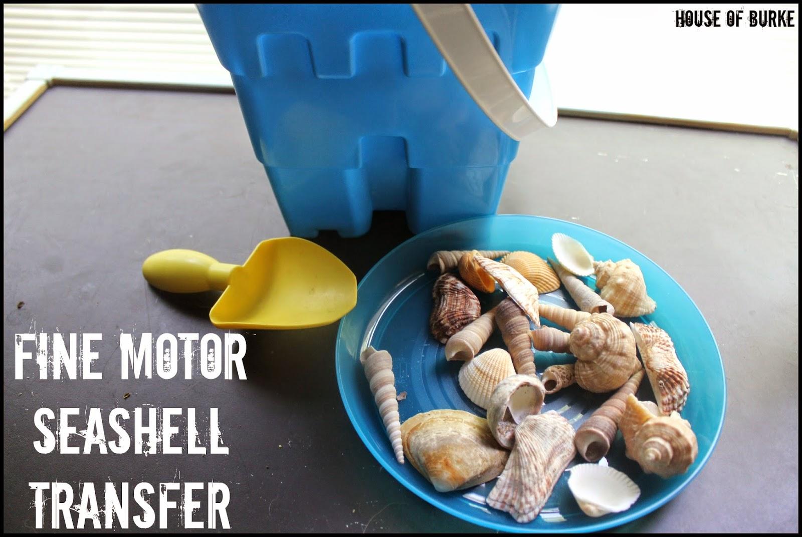 Sea Themed Motor Play