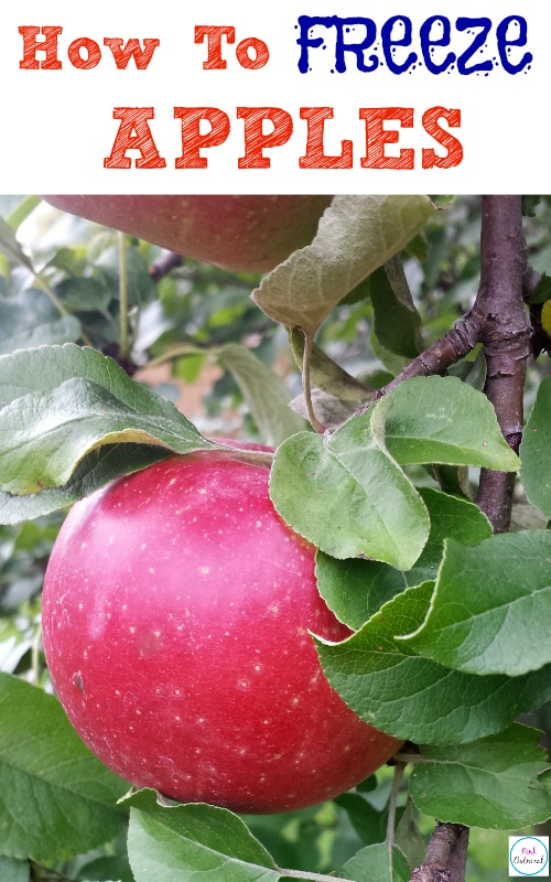 How To Freeze Apples - Pink Oatmeal
