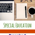 Organized Special Education Documentation - Pink Oatmeal