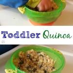 Toddler Quinoa - Pink Oatmeal
