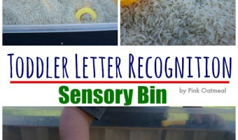 Toddler Letter Recognition Sensory Bin