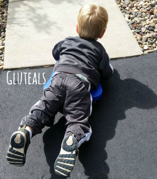 Scooter Board Strengthening Gluteals - Pink Oatmeal