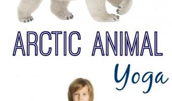 Arctic Animal Yoga