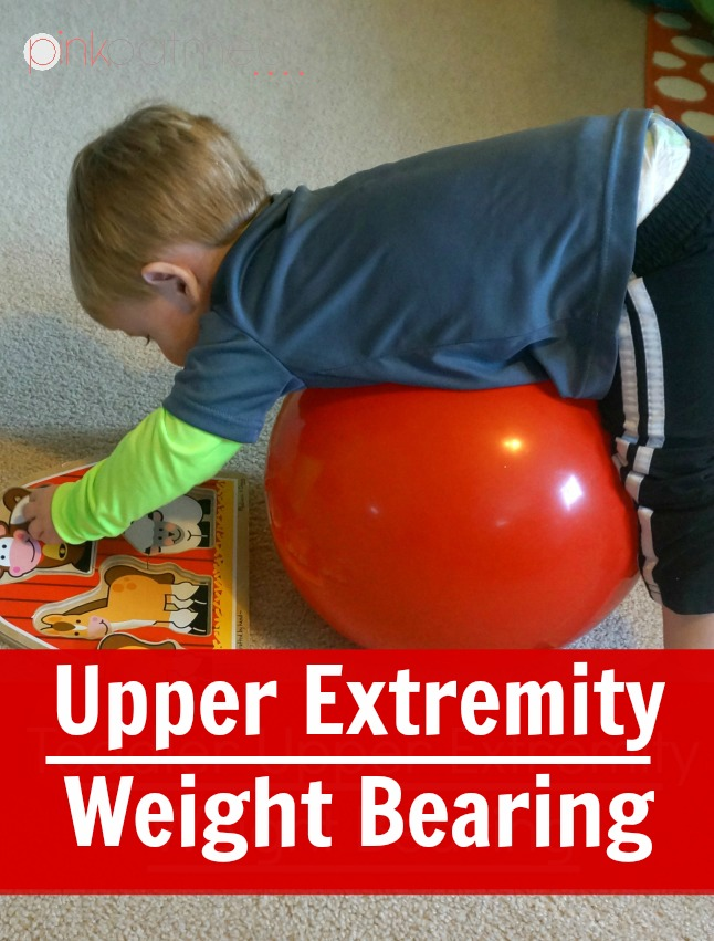 -Upper Extremity Weight Bearing - Pink Oatmeal