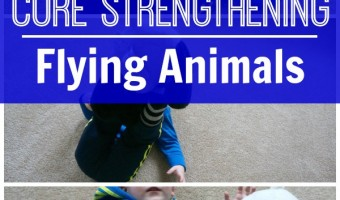 Core Strength Through Play – Flying Animals