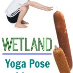 Yoga pose ideas with a wetland theme! I love the habitat theme and incorporating all the wetland elements into kids yoga!