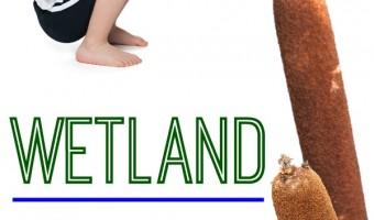 Wetland Themed Yoga