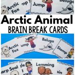 Arctic Animal Brain Breaks