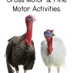 November Gross Motor and Fine Motor Activities