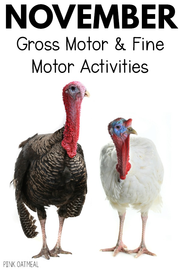 November Gross Motor and Fine Motor Activities