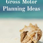 Ocean themed gross motor planning ideas. Gross motor activities that center around the ocean life, beach, and activities. These activities are perfect for an ocean unit, an ocean camp or ocean theme!