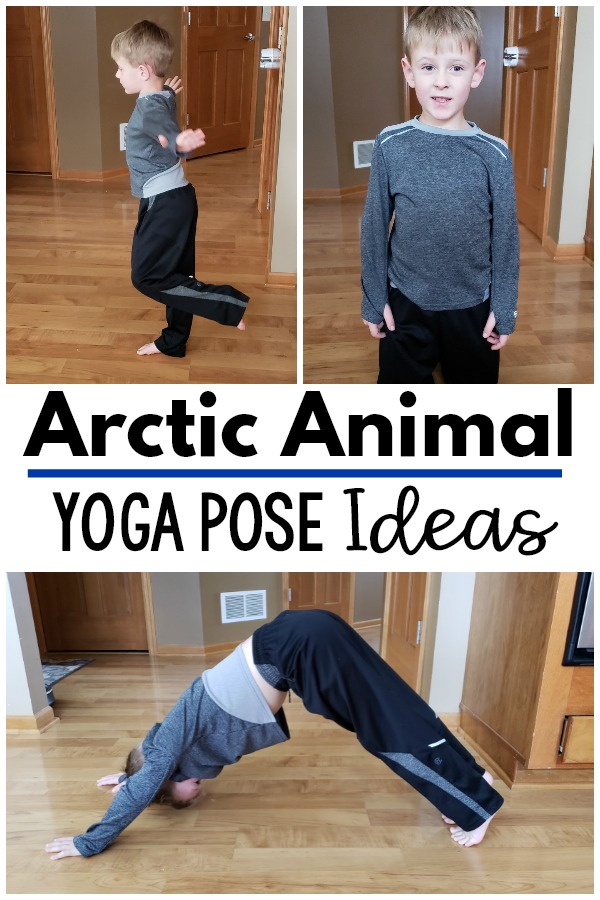 Arctic animal movement activities. Fun yoga and movement ideas to go with an arctic theme. Great for your polar unit, arctic unit or to use as a brain break. A fun gross motor and motor room activity as well. Great to use all winter long!